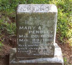"""Mary Adeline """"THALMY"""" Mitchell Pendley (1852-1915) - Find A Grave Memorial"""
