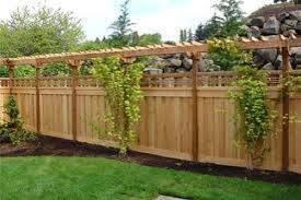 Beautiful Privacy Fence Designs Fence With Trellis Top Love This Backyard Fences Backyard Privacy Fence Designs