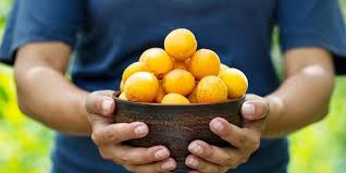 apricot seeds health benefits
