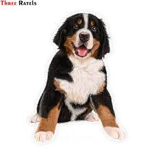 Three Ratels Lcs351 11 5x15 3cm Saint Bernard Dog Colorful Car Sticker Funny Car Stickers Styling Removable Decal Car Stickers Aliexpress