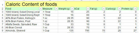 excel template food calorie and