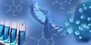 Image result for p-Phenylenediamine (PPD) Market Research