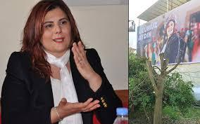 CHP'li Aydın Büyükşehir Belediye Başkanı Özlem Çerçioğlu'ndan ...