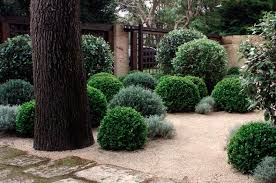 the 10 best landscapers in australia