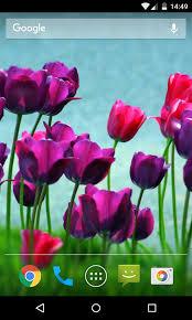 free flower live wallpaper hd apk
