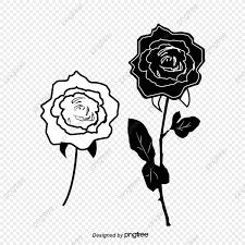 أبيض وأسود الورد أبيض وأسود روز خط Png والمتجهات للتحميل مجانا