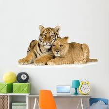 Lion And Tiger Cubs Wall Decal Wallmonkeys Com