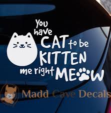 You Have Cat To Be Kitten Me Right Meow Decal