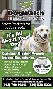 Dogwatch Hidden Dog Fences Use A Radio Signal Transmitted Through An Underground Boundary Wire Your Dog Or Cat Wears A Special Coll Dog Fence Pet Fence Dogs