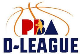 Pba Developmental League Wikipedia