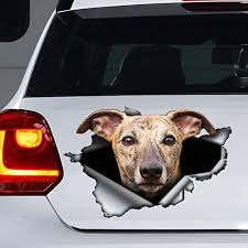 Amazon Com Brindle Greyhound Car Decal Torn Metal Decal Greyhound Sticker Vinyl Sticker For Cars Windows Walls Fridge Toilet And More 11 Inch Kitchen Dining