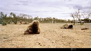 Clips From Rabbit Proof Fence