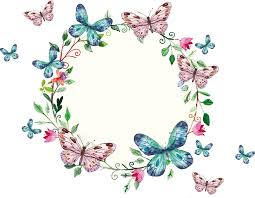 Freepi Com Floral Wreath And Butterflies Frame Marcos De