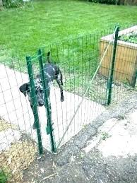 How To Build A Garden Gate With Wire Home Designs Inspiration