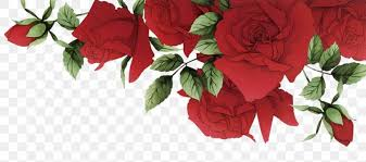 garden roses beach rose red flower png