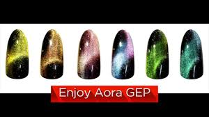 instruction how to apply aora gep