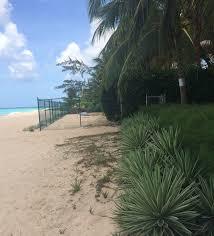 Restrictions Facing Nesting Sea Turtles Barbados Sea Turtle Project