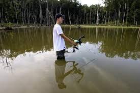 Bow fishermen taking aim - Dubois County Herald