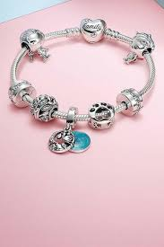 pandora charms silver gold charms