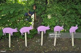 A Child Climbs A Fence Behind Cardboard Cut Outs Representing Pigs News Photo Getty Images