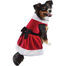 petco holiday ls mrs claus dog