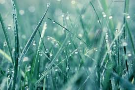 ombre background rain 900x563