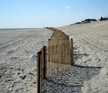 Sand Fence For Beach Preservation And Dune Restoration From Kalinich
