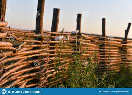 384 Woven Willow Wicker Fence Photos Free Royalty Free Stock Photos From Dreamstime