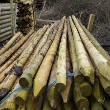 Peeled And Pointed Pine Posts And Stakes Buy Machined Posts And Stakes Online From The Experts At Uk Timber