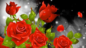 3d flower wallpapers rose rose flowers