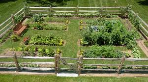 gorgeous fenced vegetable garden clattr
