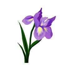 Yoja 15 4x21 9m Purple Iris Flower Home Room Decoration Wall Sticker Creative Wc Toilet Decal T1 1658 Wall Stickers Aliexpress