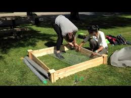 How To Build A Greenes Raised Garden Bed Youtube