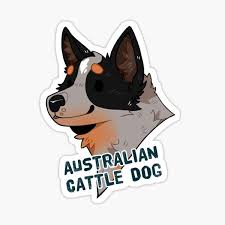 Australian Cattle Dog Blue Heeler Cute Dog Cartoon Sticker By Savkate Redbubble