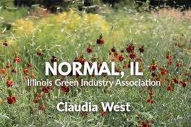 Phyto Studio-Normal, Illinois: Claudia West