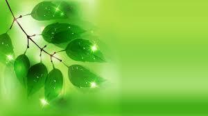 خلفية خضراء اجمل الخلفيات الخضراء للهواتف والكمبيوتر كلام نسوان