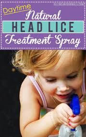 daytime natural head lice treatment