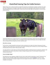 Electrified Fencing Tips For Cattle Farmers