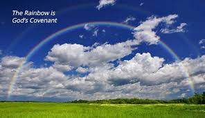 what is the meaning of the rainbow neverthirsty