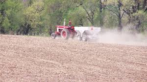 A slow start, but crops that have been planted are generally doing well |  News | dbrnews.com
