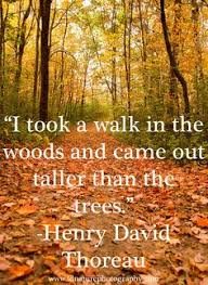 nature quotes henry david thoreau walden image quotes at com