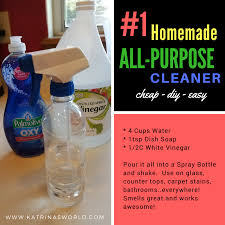 1 homemade all purpose cleaner