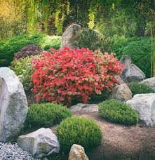 40 japanese garden plants plants for a