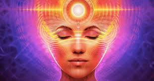 Image result for pineal gland location