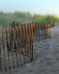 Sand Dune Fence