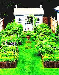 vegetable garden landscaping design