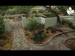 linda peterson s san antonio garden