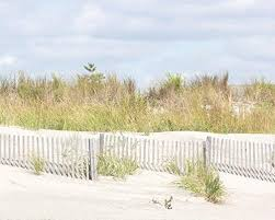 Sand Dunes With Beach Fence Print Peac Buy Online In Botswana At Desertcart