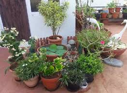 how to build a terrace garden in india