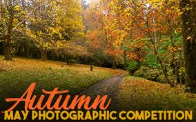 AUTUMN - May Photographic Competition 2020 – Autumn - The Breeze